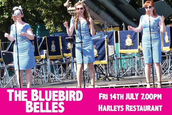 bluebirdbelles